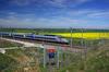 LGV Bordeaux-Toulouse – TGV circulant dans un paysage champêtre